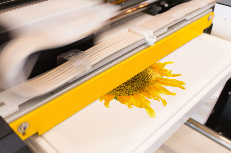 dtg direct to garment printers brighton